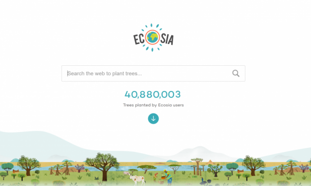 Ecosia: Planting trees one click at a time