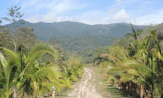 Recapping the Epic Reforestation of Costa Rica