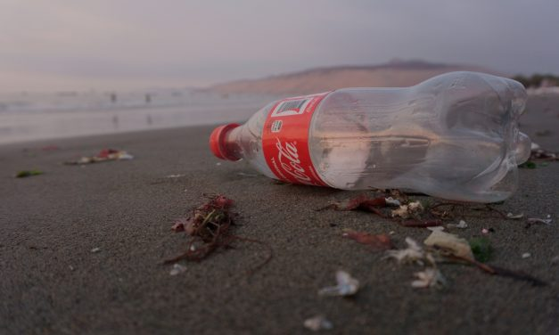 6 Reasons Why Coca-Cola is Just the Worst