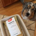 The Farmer's Dog Food: Is It Eco-Friendly and Aussie Approved?